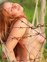 Go to Caught Free Pictures Gallerie